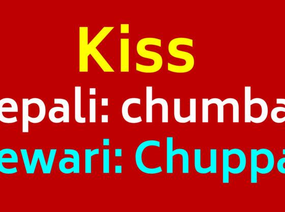 kiss you in newari